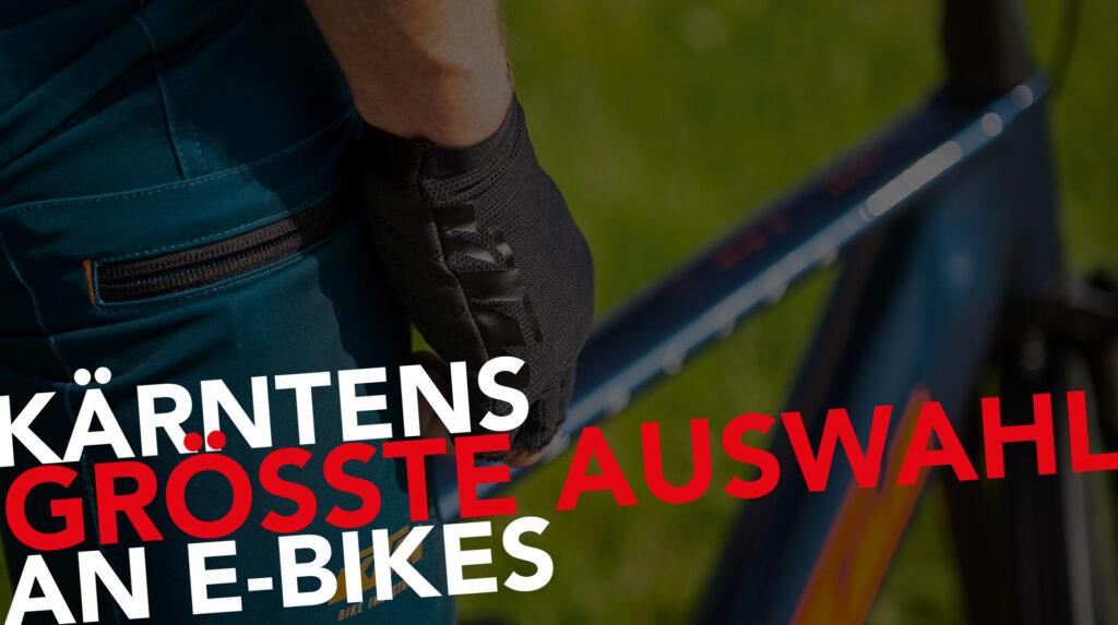 bikeparadies-groesste-auswahl